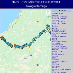 MAPS江の川の瀬と淵(下流部)